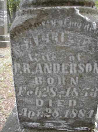 ANDERSON, SALLIE - Monroe County, Arkansas | SALLIE ANDERSON - Arkansas Gravestone Photos