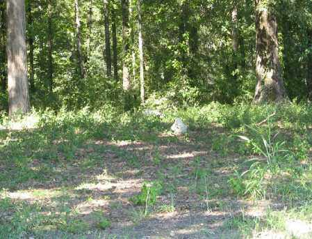 *OVERVIEW,  - Monroe County, Arkansas |  *OVERVIEW - Arkansas Gravestone Photos