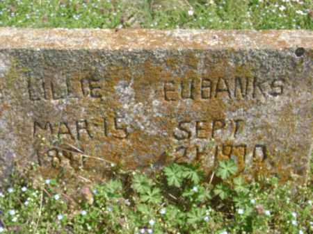 EUBANKS, LILLIE - Monroe County, Arkansas | LILLIE EUBANKS - Arkansas Gravestone Photos