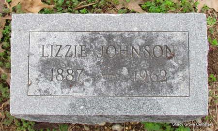 JOHNSON, LIZZIE - Monroe County, Arkansas | LIZZIE JOHNSON - Arkansas Gravestone Photos