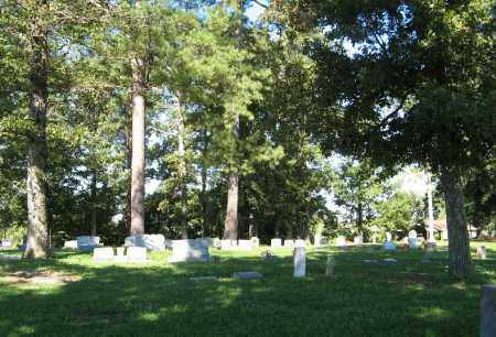 *UPPER CEMETERY, OVERVIEW - Monroe County, Arkansas | OVERVIEW *UPPER CEMETERY - Arkansas Gravestone Photos