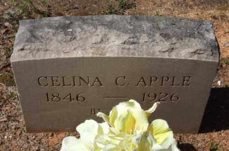 APPLE, CELINA C - Montgomery County, Arkansas | CELINA C APPLE - Arkansas Gravestone Photos