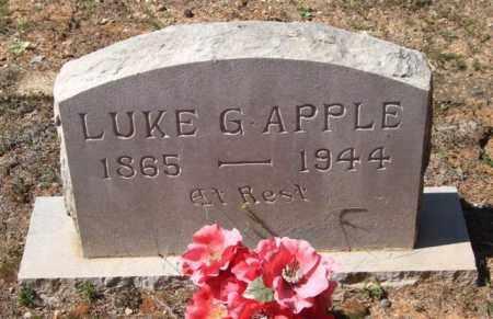 APPLE, LUKE G - Montgomery County, Arkansas | LUKE G APPLE - Arkansas Gravestone Photos