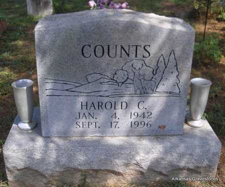 COUNTS, HAROLD C  (2ND. STONE) - Montgomery County, Arkansas | HAROLD C  (2ND. STONE) COUNTS - Arkansas Gravestone Photos