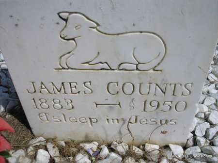 COUNTS, JAMES - Montgomery County, Arkansas | JAMES COUNTS - Arkansas Gravestone Photos