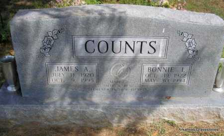 COUNTS, BONNIE I - Montgomery County, Arkansas | BONNIE I COUNTS - Arkansas Gravestone Photos