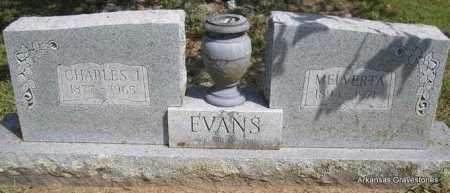 EVANS, CHARLES J - Montgomery County, Arkansas | CHARLES J EVANS - Arkansas Gravestone Photos