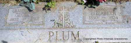 PLUM, ELIZABETH - Montgomery County, Arkansas | ELIZABETH PLUM - Arkansas Gravestone Photos