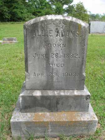ADAMS, MARY ALLIE - Nevada County, Arkansas | MARY ALLIE ADAMS - Arkansas Gravestone Photos