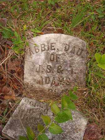 ADAMS, ABBIE - Nevada County, Arkansas | ABBIE ADAMS - Arkansas Gravestone Photos