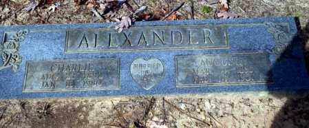 ALEXANDER, CHARLIE - Nevada County, Arkansas | CHARLIE ALEXANDER - Arkansas Gravestone Photos