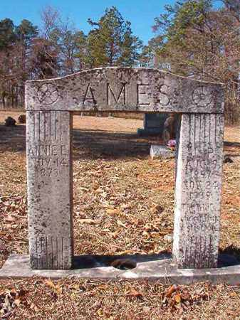 AMES, ANNIE E. - Nevada County, Arkansas | ANNIE E. AMES - Arkansas Gravestone Photos