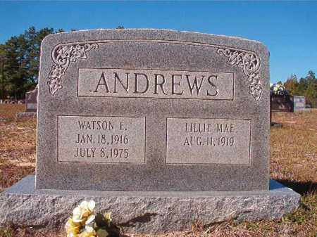 ANDREWS, WATSON E - Nevada County, Arkansas | WATSON E ANDREWS - Arkansas Gravestone Photos