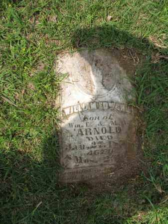 ARNOLD, WILLIAM EDWARD - Nevada County, Arkansas | WILLIAM EDWARD ARNOLD - Arkansas Gravestone Photos