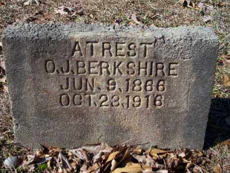 BERKSHIRE, O J - Nevada County, Arkansas | O J BERKSHIRE - Arkansas Gravestone Photos