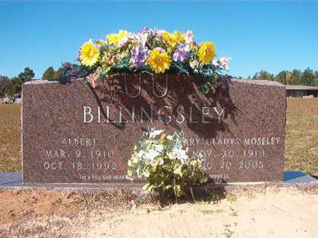 BILLINGSLEY, ALBERT - Nevada County, Arkansas | ALBERT BILLINGSLEY - Arkansas Gravestone Photos