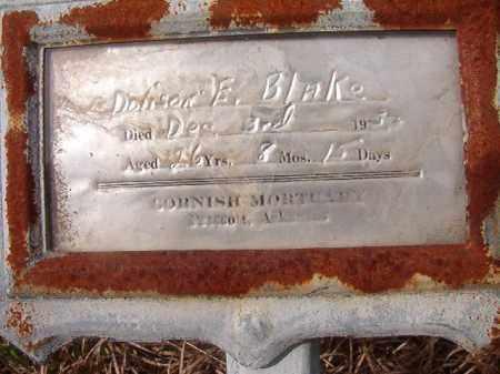 BLAKE, DOLISON E - Nevada County, Arkansas | DOLISON E BLAKE - Arkansas Gravestone Photos