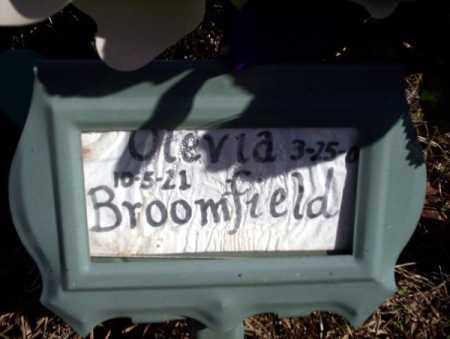 BROOMFIELD, OLEVIA - Nevada County, Arkansas | OLEVIA BROOMFIELD - Arkansas Gravestone Photos