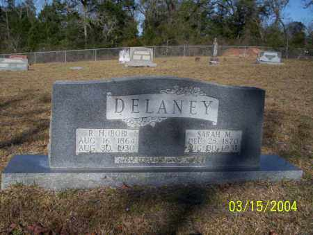 DELANEY, R.H. - Nevada County, Arkansas | R.H. DELANEY - Arkansas Gravestone Photos