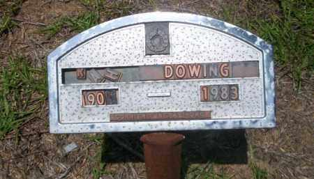 DOWNING, SARAH - Nevada County, Arkansas | SARAH DOWNING - Arkansas Gravestone Photos