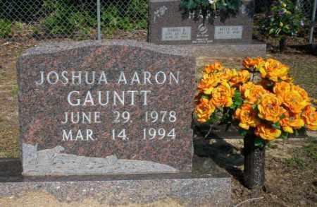 GAUNTT, JOSHUA AARON - Nevada County, Arkansas | JOSHUA AARON GAUNTT - Arkansas Gravestone Photos