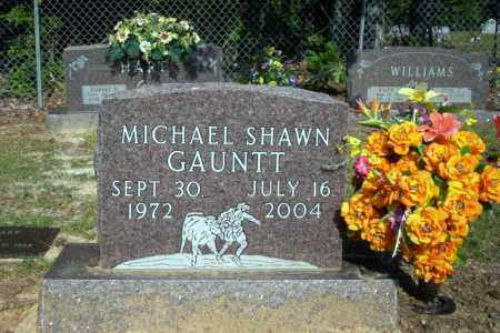 GAUNTT, MICHAEL SHAWN - Nevada County, Arkansas | MICHAEL SHAWN GAUNTT - Arkansas Gravestone Photos