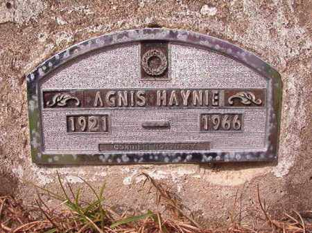 HAYNIE, AGNIS - Nevada County, Arkansas | AGNIS HAYNIE - Arkansas Gravestone Photos