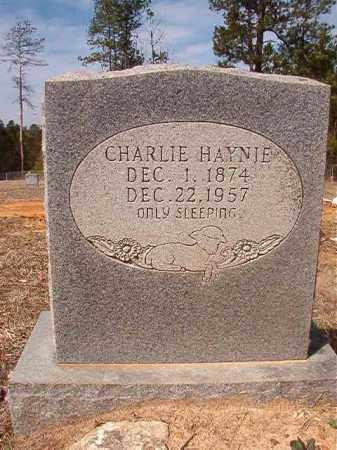HAYNIE, CHARLIE - Nevada County, Arkansas | CHARLIE HAYNIE - Arkansas Gravestone Photos