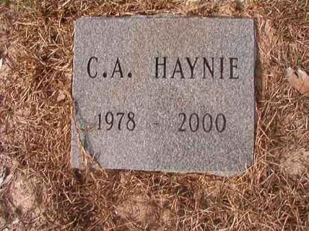 HAYNIE, C A - Nevada County, Arkansas | C A HAYNIE - Arkansas Gravestone Photos