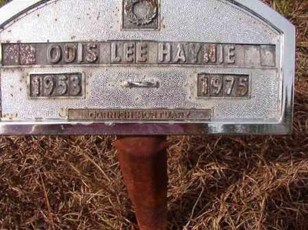 HAYNIE, ODIS LEE - Nevada County, Arkansas | ODIS LEE HAYNIE - Arkansas Gravestone Photos