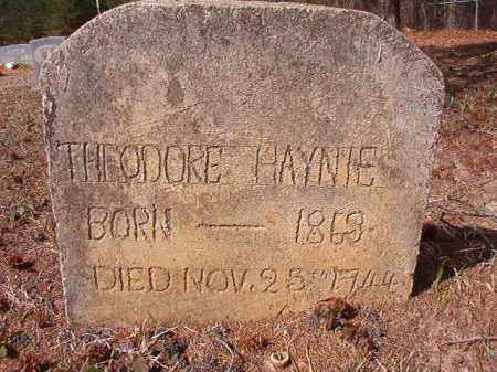 HAYNIE, THEODORE - Nevada County, Arkansas | THEODORE HAYNIE - Arkansas Gravestone Photos