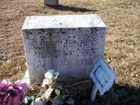 JENKINS, ALBERT - Nevada County, Arkansas | ALBERT JENKINS - Arkansas Gravestone Photos