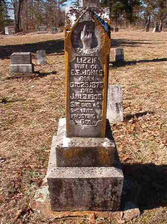 JONES, LIZZIE - Nevada County, Arkansas | LIZZIE JONES - Arkansas Gravestone Photos