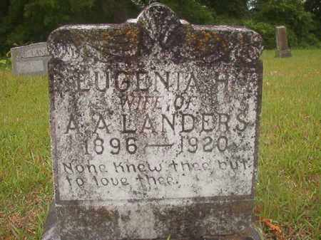 LANDERS, EUGENIA H - Nevada County, Arkansas | EUGENIA H LANDERS - Arkansas Gravestone Photos
