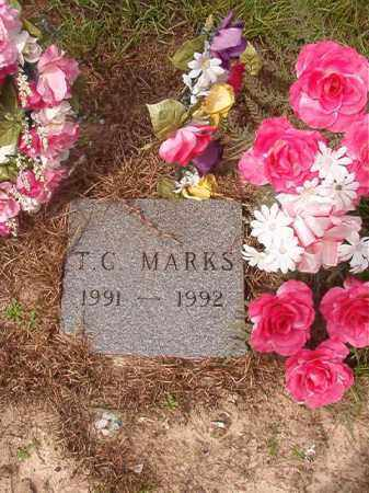 MARKS, T C - Nevada County, Arkansas | T C MARKS - Arkansas Gravestone Photos