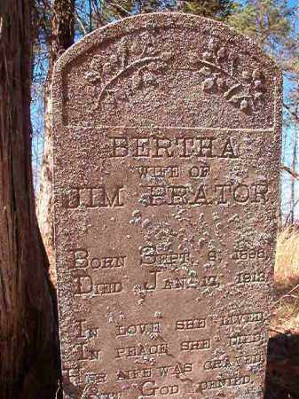 PRATOR, BERTHA - Nevada County, Arkansas | BERTHA PRATOR - Arkansas Gravestone Photos