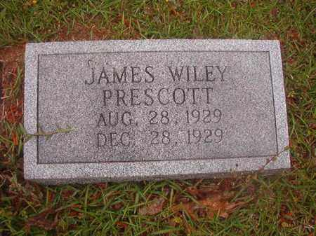PRESCOTT, JAMES WILEY - Nevada County, Arkansas | JAMES WILEY PRESCOTT - Arkansas Gravestone Photos