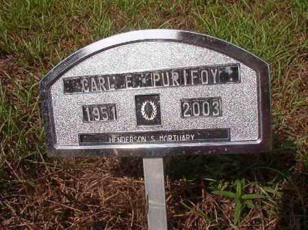 PURIFOY, CARL E - Nevada County, Arkansas | CARL E PURIFOY - Arkansas Gravestone Photos