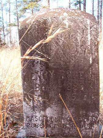 ROGERS, HENRY - Nevada County, Arkansas | HENRY ROGERS - Arkansas Gravestone Photos