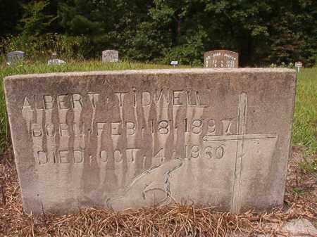 TIDWELL, ALBERT - Nevada County, Arkansas | ALBERT TIDWELL - Arkansas Gravestone Photos