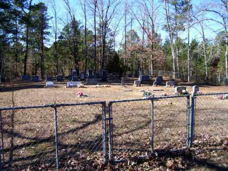 *WALDREP CEMETERY OVERVIEW,  - Nevada County, Arkansas |  *WALDREP CEMETERY OVERVIEW - Arkansas Gravestone Photos