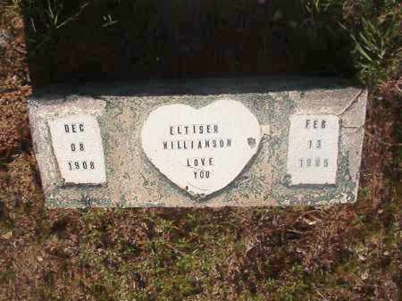 WILLIAMSON, ELTISER - Nevada County, Arkansas | ELTISER WILLIAMSON - Arkansas Gravestone Photos