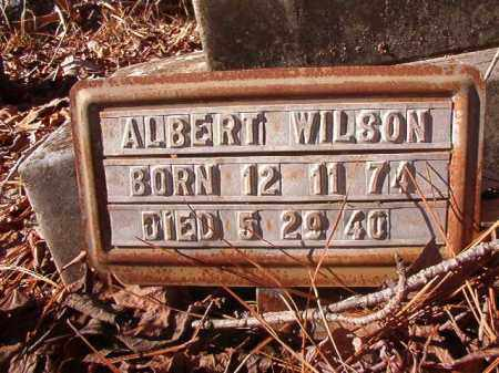WILSON, ALBERT - Nevada County, Arkansas | ALBERT WILSON - Arkansas Gravestone Photos