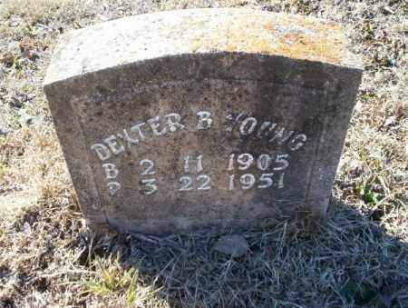 YOUNG, DEXTER B - Nevada County, Arkansas | DEXTER B YOUNG - Arkansas Gravestone Photos