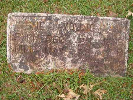 YOUNG, IRENE - Nevada County, Arkansas | IRENE YOUNG - Arkansas Gravestone Photos