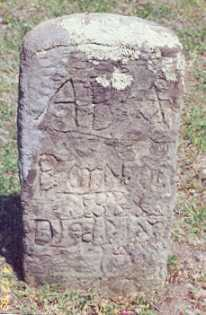 ADAMS, ALBERT B. - Newton County, Arkansas | ALBERT B. ADAMS - Arkansas Gravestone Photos