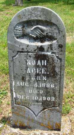 AGEE, NOAH - Newton County, Arkansas | NOAH AGEE - Arkansas Gravestone Photos