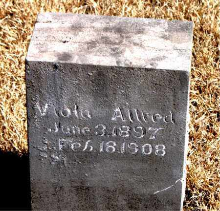 ALLRED, VIOLA - Newton County, Arkansas | VIOLA ALLRED - Arkansas Gravestone Photos