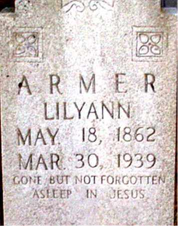 ARMER, LILYANN - Newton County, Arkansas | LILYANN ARMER - Arkansas Gravestone Photos