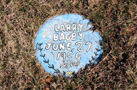 BAGBY, LARRY - Newton County, Arkansas | LARRY BAGBY - Arkansas Gravestone Photos